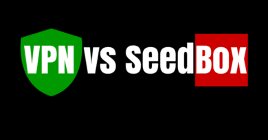 vpn ou seedbox